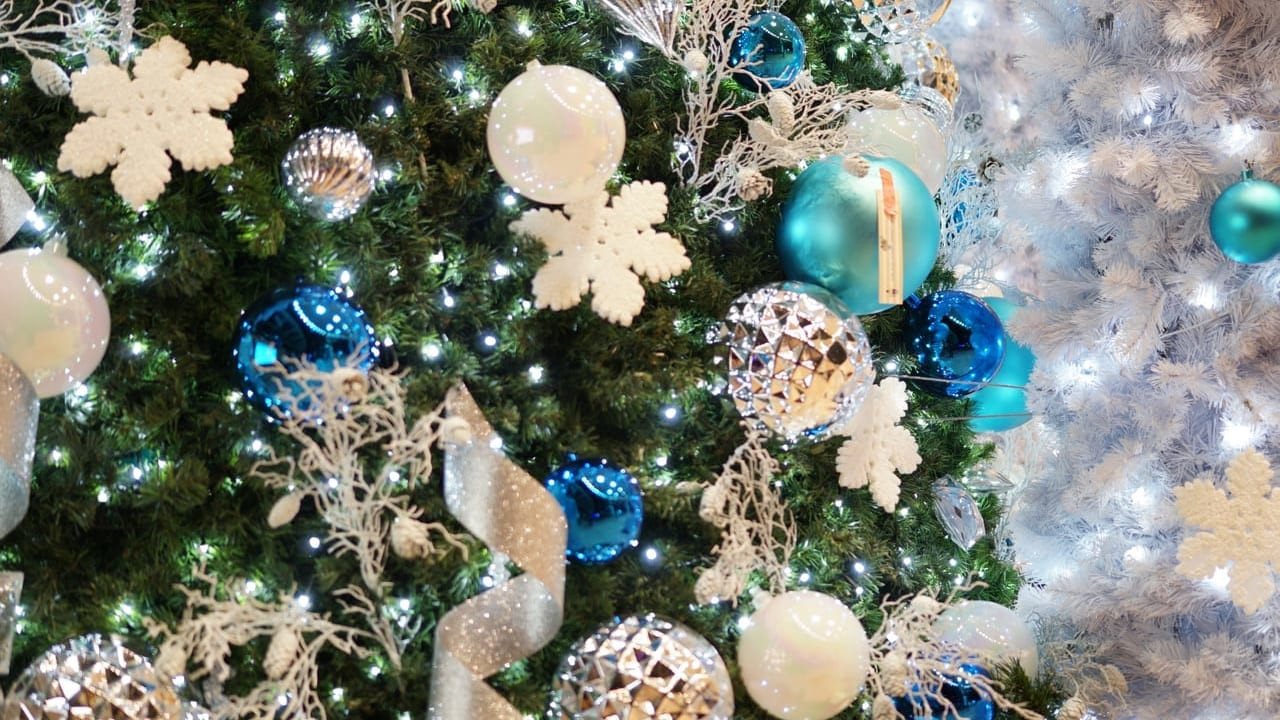 松本市クリスマスツリー
