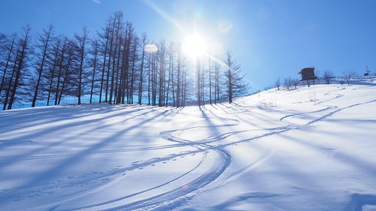 松本市スキー