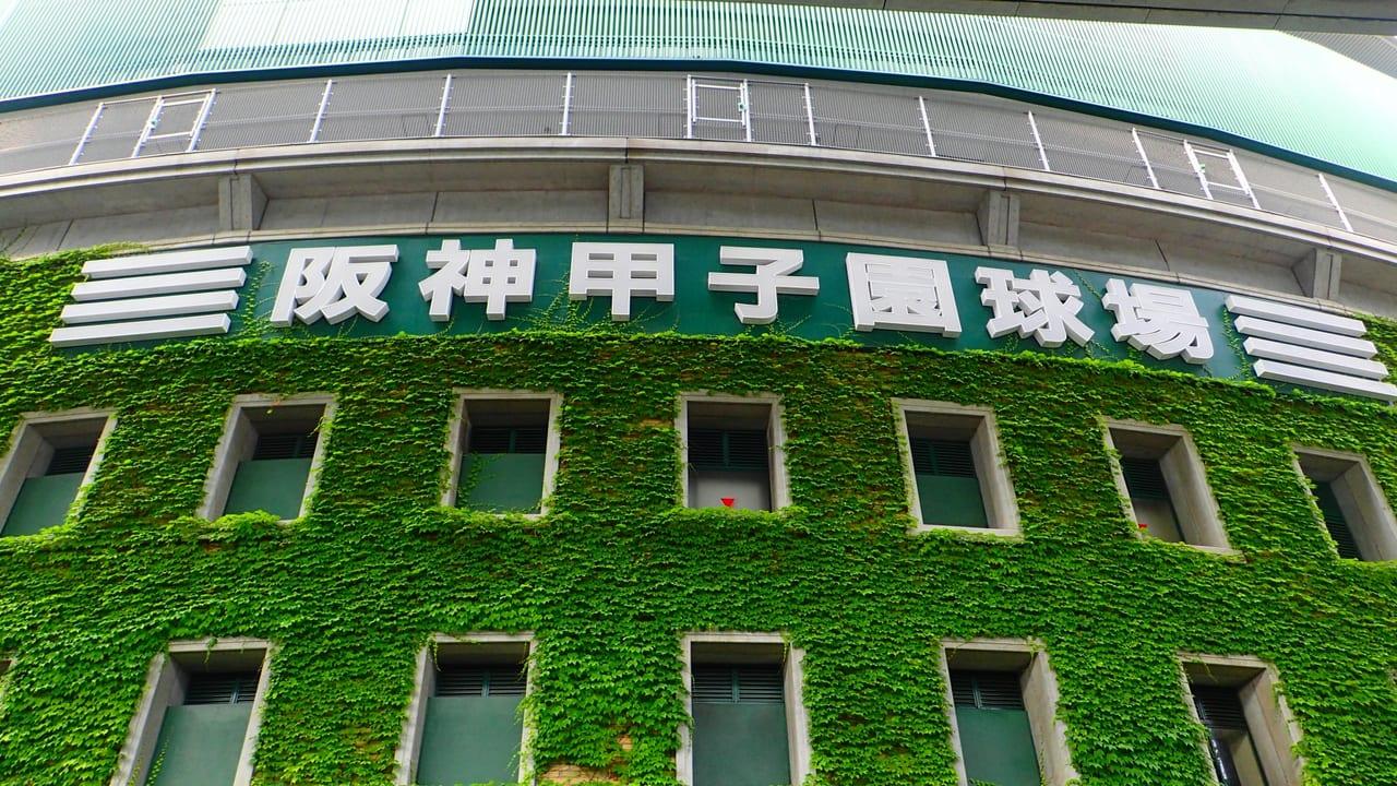 松本市高校野球